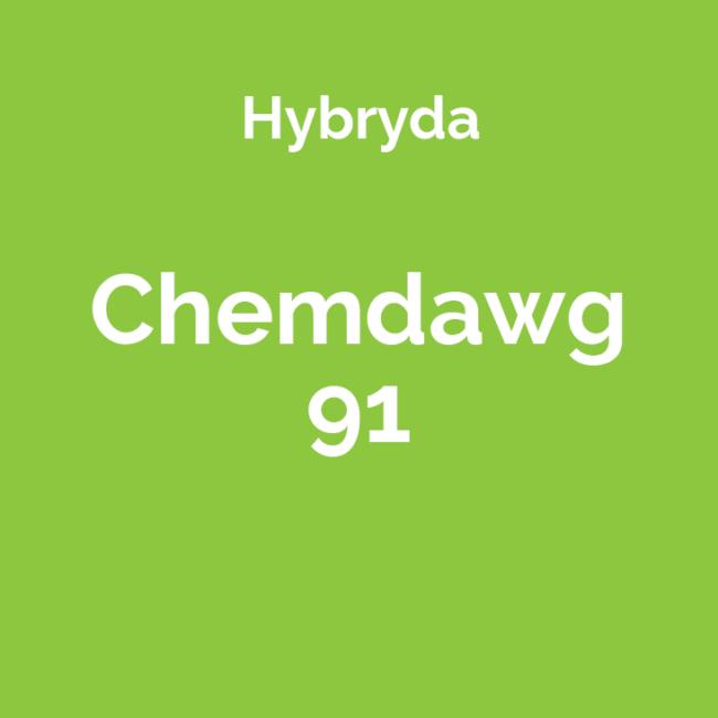 Chemdawg 91