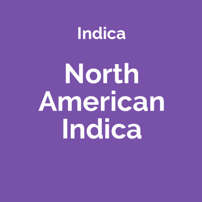 north american indica