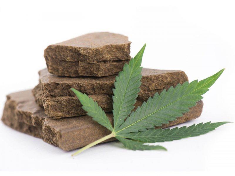 Czym jest haszysz i jak się robi ten ekstrakt z marihuany?
