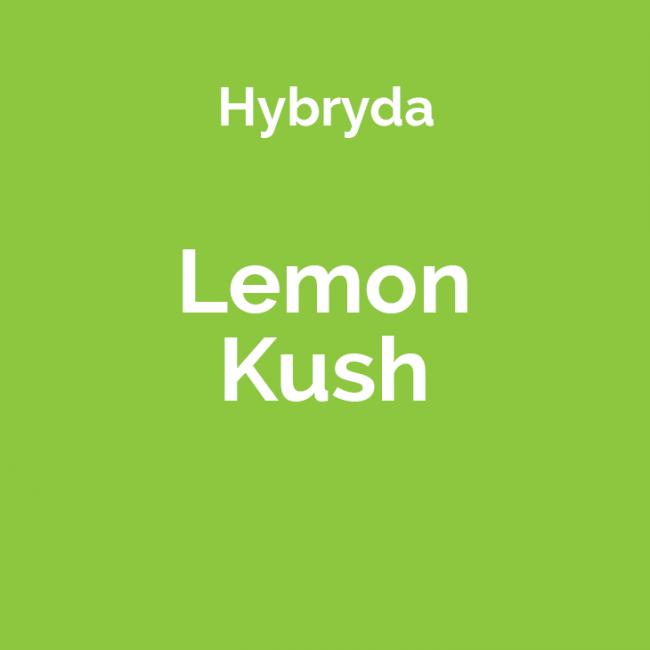 Lemon Kush - opis odmiany i nasiona marihuany