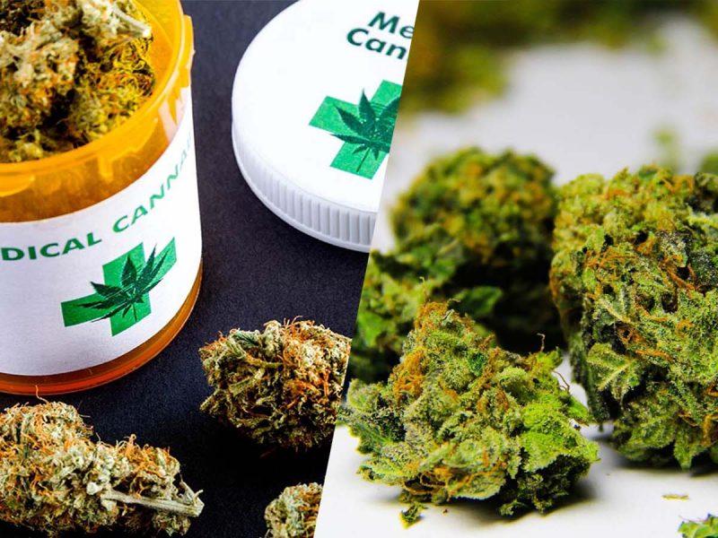 Różnice między marihuaną rekreacyjną a medyczną