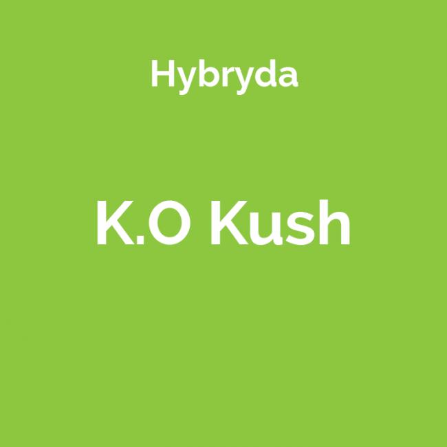 Odmiana marihuany K.O Kush
