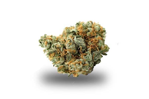 Lemon Haze odmiana i nasiona marihuany