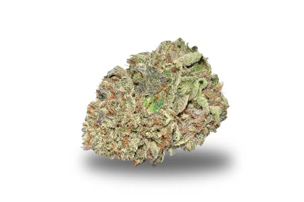 Hindu Kush odmiana i nasiona marihuany