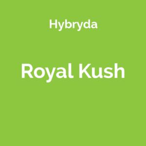 Royal Kush