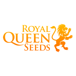 Royal Queen Seeds - producent nasion marihuany